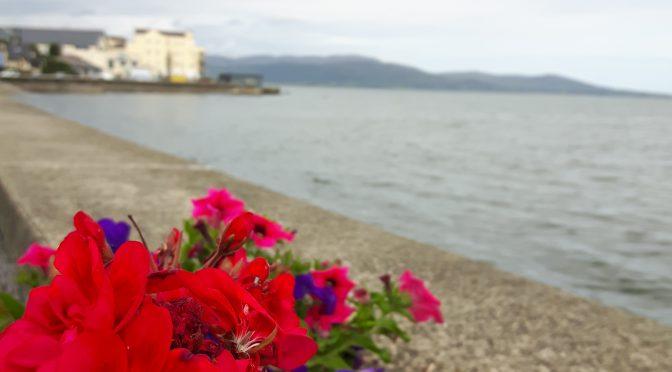 Heimwee naar Ierland, een reisverslag in columns – deel VI